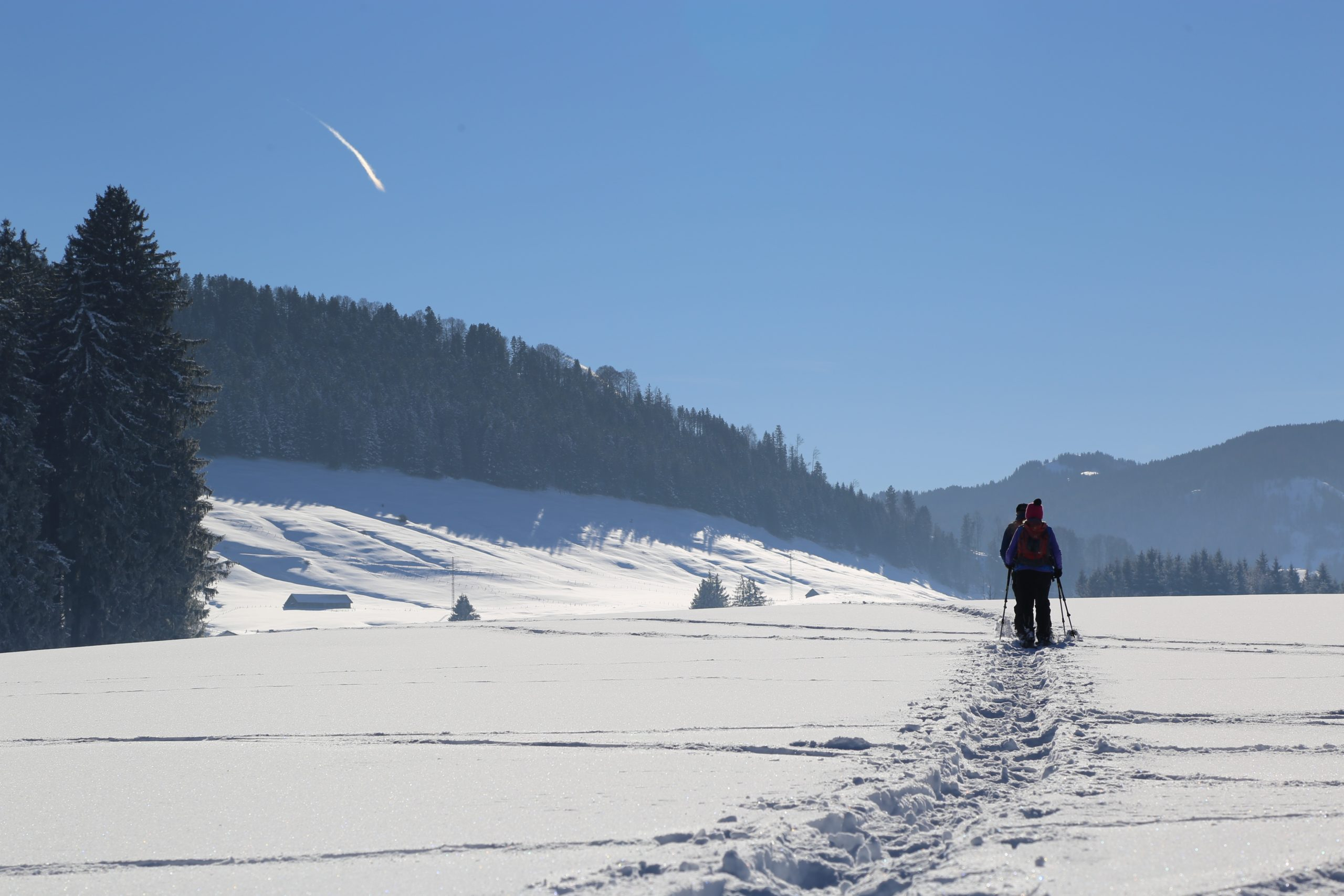 winter-4026451